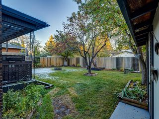 Photo 47: 211 Silvergrove Place NW in Calgary: Silver Springs Detached for sale : MLS®# A1042905