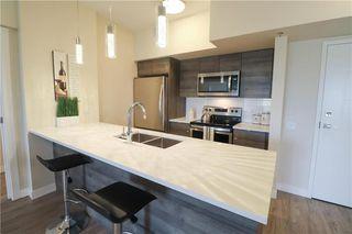 Photo 2: 304 70 Philip Lee Drive in Winnipeg: Crocus Meadows Condominium for sale (3K)  : MLS®# 202100324