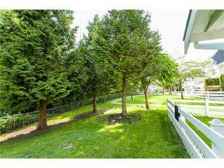 Photo 19: # 14 23560 119TH AV in Maple Ridge: Cottonwood MR Condo for sale : MLS®# V1065890