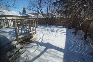 Photo 43: 56 TEMPLEWOOD RD NE in Calgary: Temple House for sale : MLS®# C4232506