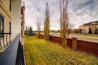 Photo 27: 215 1406 HODGSON Way in Edmonton: Zone 14 Condo for sale : MLS®# E4175388