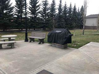 Photo 39: 215 1406 HODGSON Way in Edmonton: Zone 14 Condo for sale : MLS®# E4175388