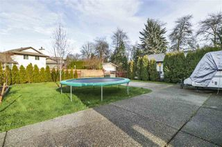 Photo 19: 22157 124 Avenue in Maple Ridge: West Central House for sale : MLS®# R2421636