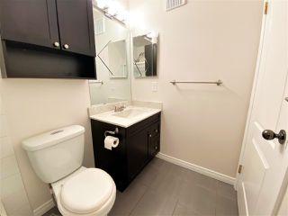Photo 41: 203 11915 106 Avenue in Edmonton: Zone 08 Condo for sale : MLS®# E4203522