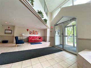 Photo 3: 203 11915 106 Avenue in Edmonton: Zone 08 Condo for sale : MLS®# E4203522