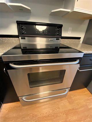 Photo 15: 203 11915 106 Avenue in Edmonton: Zone 08 Condo for sale : MLS®# E4203522