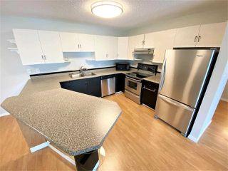 Photo 17: 203 11915 106 Avenue in Edmonton: Zone 08 Condo for sale : MLS®# E4203522