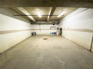 Photo 47: 203 11915 106 Avenue in Edmonton: Zone 08 Condo for sale : MLS®# E4203522