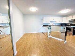 Photo 18: 203 11915 106 Avenue in Edmonton: Zone 08 Condo for sale : MLS®# E4203522
