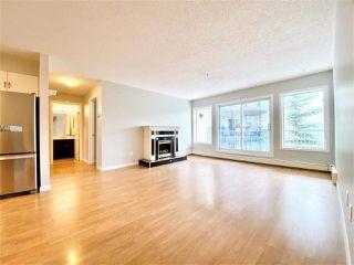 Photo 22: 203 11915 106 Avenue in Edmonton: Zone 08 Condo for sale : MLS®# E4203522