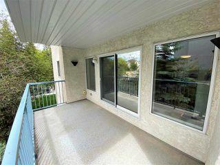 Photo 24: 203 11915 106 Avenue in Edmonton: Zone 08 Condo for sale : MLS®# E4203522