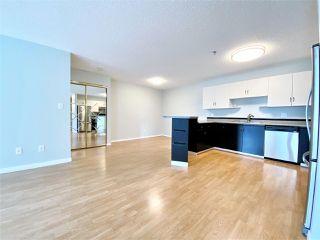 Photo 9: 203 11915 106 Avenue in Edmonton: Zone 08 Condo for sale : MLS®# E4203522