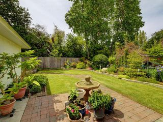 Photo 11: 564 Oliver St in Oak Bay: OB South Oak Bay House for sale : MLS®# 841071