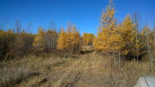 Photo 2: #3-51227 RGE RD 270 Road: Rural Parkland County Rural Land/Vacant Lot for sale : MLS®# E4211009
