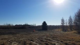 Photo 18: #3-51227 RGE RD 270 Road: Rural Parkland County Rural Land/Vacant Lot for sale : MLS®# E4211009