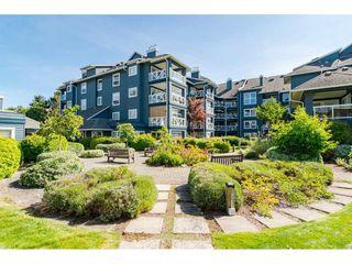 """Photo 28: 305 12911 RAILWAY Avenue in Richmond: Steveston South Condo for sale in """"THE BRITANNIA"""" : MLS®# R2490969"""