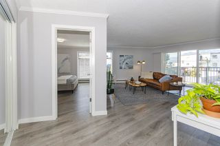 Photo 14: 202 2244 MCGILL STREET in Vancouver: Hastings Condo for sale (Vancouver East)  : MLS®# R2488422