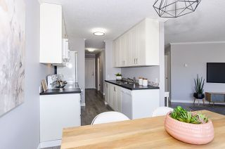 Photo 20: 202 2244 MCGILL STREET in Vancouver: Hastings Condo for sale (Vancouver East)  : MLS®# R2488422