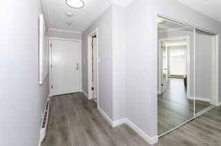 Photo 26: 202 2244 MCGILL STREET in Vancouver: Hastings Condo for sale (Vancouver East)  : MLS®# R2488422