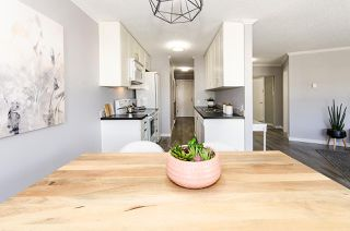 Photo 6: 202 2244 MCGILL STREET in Vancouver: Hastings Condo for sale (Vancouver East)  : MLS®# R2488422