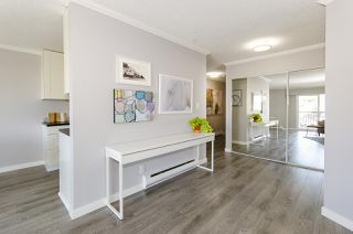 Photo 13: 202 2244 MCGILL STREET in Vancouver: Hastings Condo for sale (Vancouver East)  : MLS®# R2488422