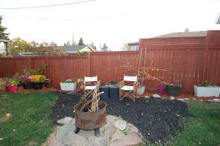 Photo 17: 8732 84 Avenue in Edmonton: Zone 18 House for sale : MLS®# E4214646