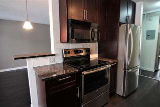 Photo 6: 303 4455A Greenview Drive NE in Calgary: Greenview Apartment for sale : MLS®# A1049950