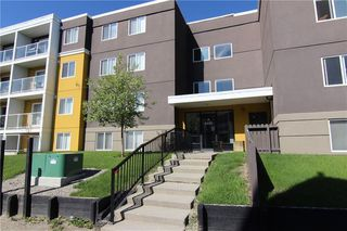 Main Photo: 303 4455A Greenview Drive NE in Calgary: Greenview Apartment for sale : MLS®# A1049950