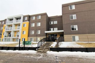 Photo 2: 303 4455A Greenview Drive NE in Calgary: Greenview Apartment for sale : MLS®# A1049950
