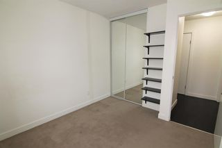 Photo 17: 303 4455A Greenview Drive NE in Calgary: Greenview Apartment for sale : MLS®# A1049950