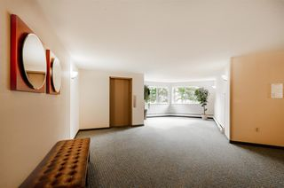 Photo 32: 109 10180 RYAN Road in Richmond: South Arm Condo for sale : MLS®# R2520556