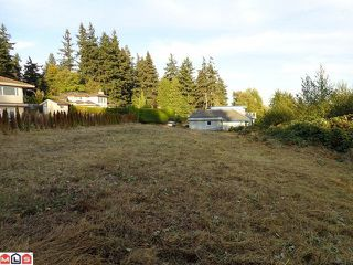 Photo 9: 12528 52A Avenue in Surrey: Panorama Ridge Land for sale : MLS®# F1223891