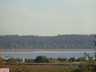 Photo 10: 12528 52A Avenue in Surrey: Panorama Ridge Land for sale : MLS®# F1223891