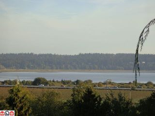 Photo 7: 12528 52A Avenue in Surrey: Panorama Ridge Land for sale : MLS®# F1223891