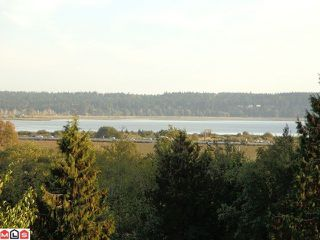 Photo 5: 12528 52A Avenue in Surrey: Panorama Ridge Land for sale : MLS®# F1223891