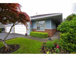 "Photo 1: 42 8889 212 Street in LANGLEY: Walnut Grove Townhouse for sale in ""GARDEN TERRACE"" (Langley)  : MLS®# F1311330"