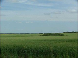 Photo 3: 0 A51069 HWY 814 Highway: Rural Leduc County Agri-Business for sale : MLS®# E1019795