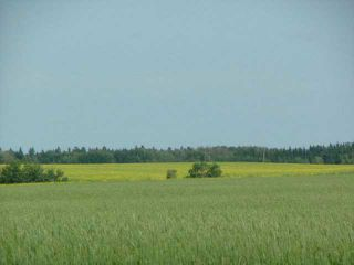 Photo 1: 0 A51069 HWY 814 Highway: Rural Leduc County Agri-Business for sale : MLS®# E1019795