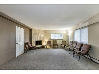 Photo 18: 1631 - 1633 SPERLING AV in Burnaby: Parkcrest Home for sale (Burnaby North)  : MLS®# V1045462