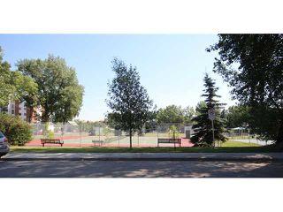 Photo 17: 5 2407 17 Street SW in Calgary: Bankview Condo for sale : MLS®# C3630664