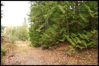 Photo 20:  in Sorrento: Notch Hill Estates Vacant Land for sale : MLS®# 10090155