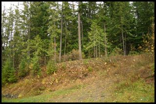 Photo 16:  in Sorrento: Notch Hill Estates Vacant Land for sale : MLS®# 10090155