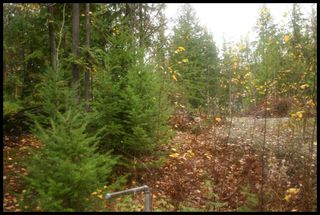Photo 24:  in Sorrento: Notch Hill Estates Vacant Land for sale : MLS®# 10090155