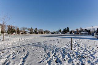 Photo 31: 10641 62 Avenue NW: Edmonton House for sale : MLS®# E4046062
