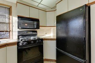 Photo 9: 10641 62 Avenue NW: Edmonton House for sale : MLS®# E4046062
