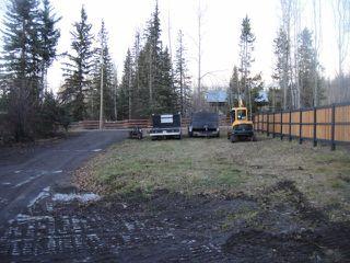 Photo 11: 4695 KISOCK Road in Burns Lake: Burns Lake - Rural West House for sale (Burns Lake (Zone 55))  : MLS®# R2421239