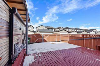 Photo 45: 193 SADDLECREST Place NE in Calgary: Saddle Ridge Detached for sale : MLS®# C4292380