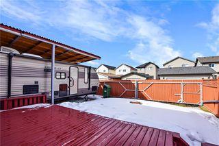 Photo 6: 193 SADDLECREST Place NE in Calgary: Saddle Ridge Detached for sale : MLS®# C4292380