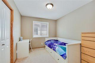 Photo 25: 193 SADDLECREST Place NE in Calgary: Saddle Ridge Detached for sale : MLS®# C4292380