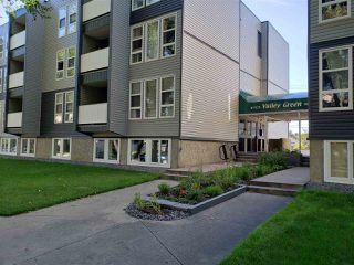 Photo 2: B1 9325 104 Avenue in Edmonton: Zone 13 Condo for sale : MLS®# E4210461